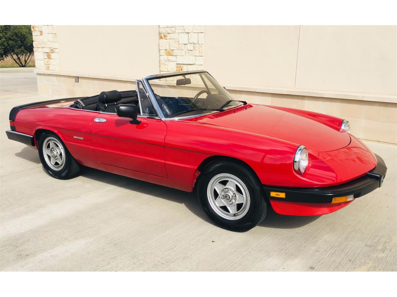 Large Picture of '86 Spider - PWT0