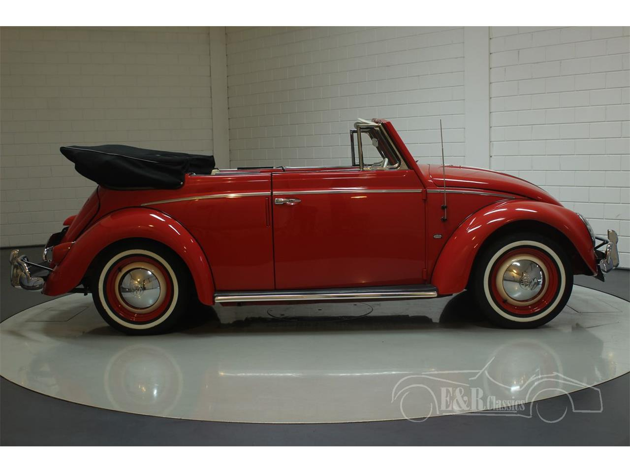 Large Picture of '59 Beetle - PX2P