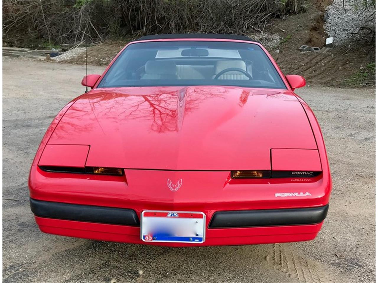 Large Picture of '89 Firebird - PX3U