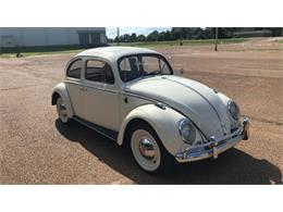 Picture of '64 Beetle - PX5R