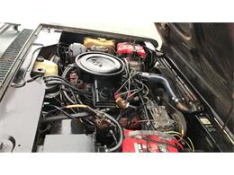 Picture of '80 Terra Offered by Cotton Warehouse Classic Cars - PX5U