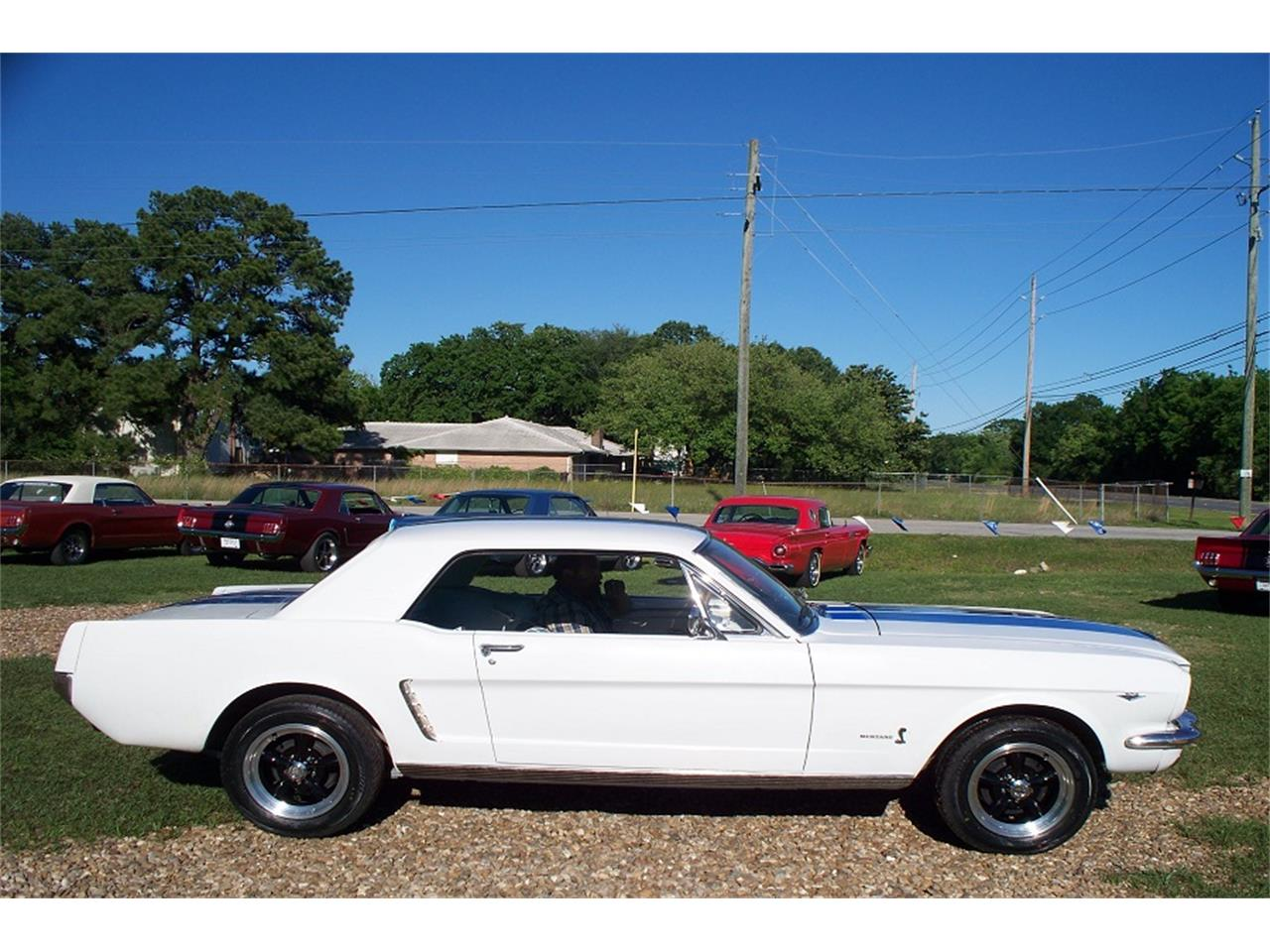 Large Picture of '65 Mustang - PXHK