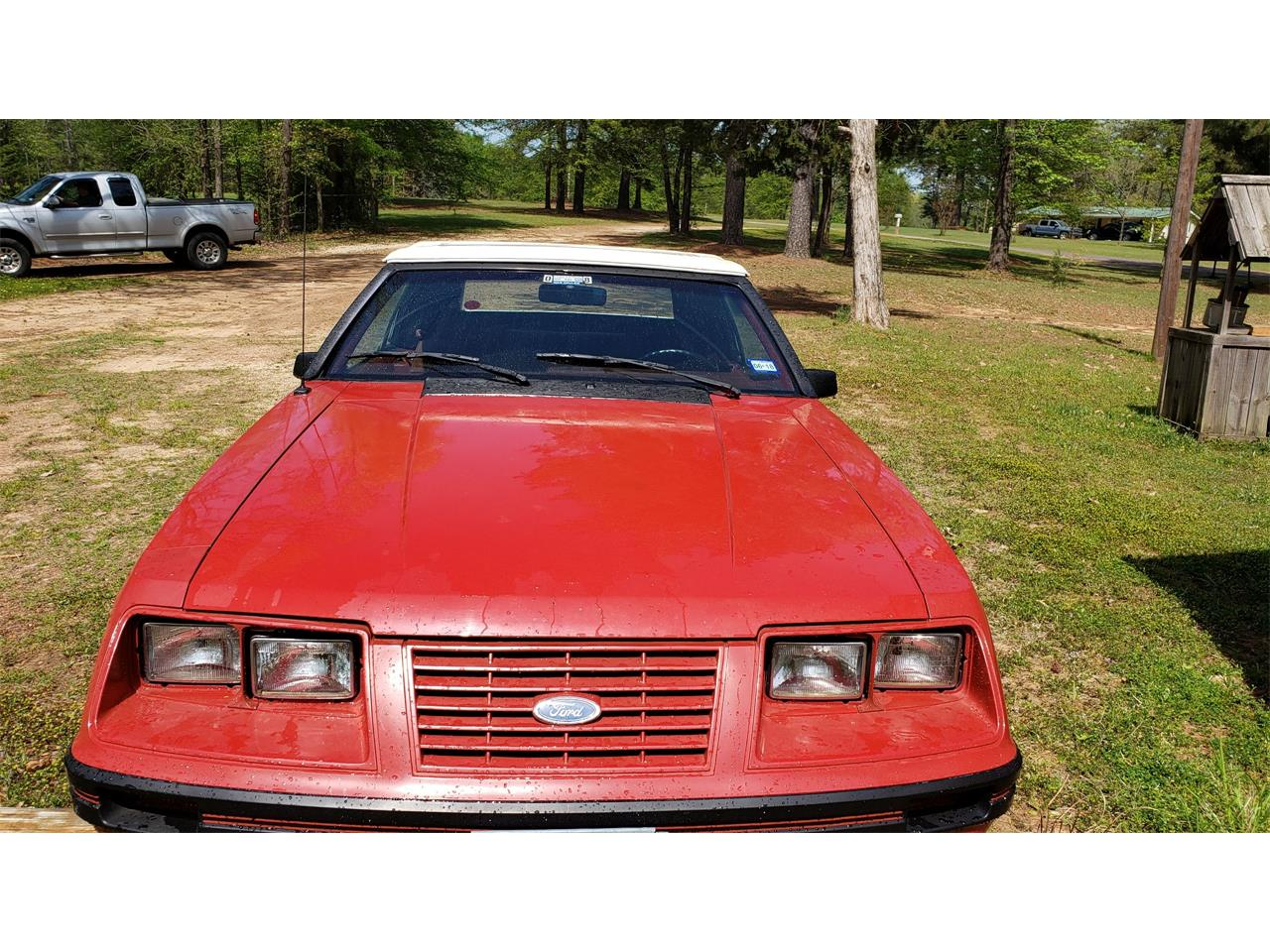 Large Picture of '84 Mustang - PXQA