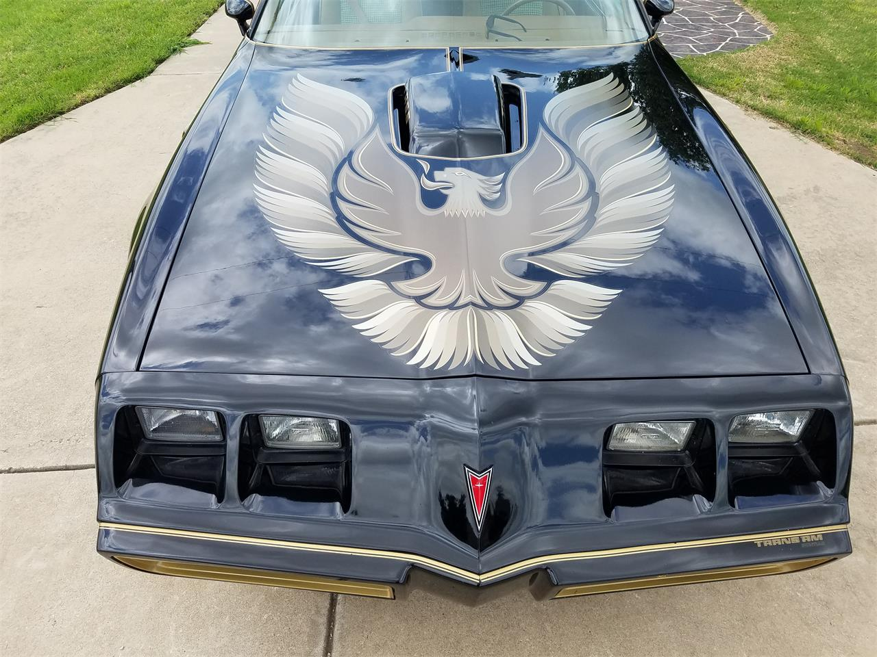 Large Picture of '79 Firebird Trans Am - PXQO