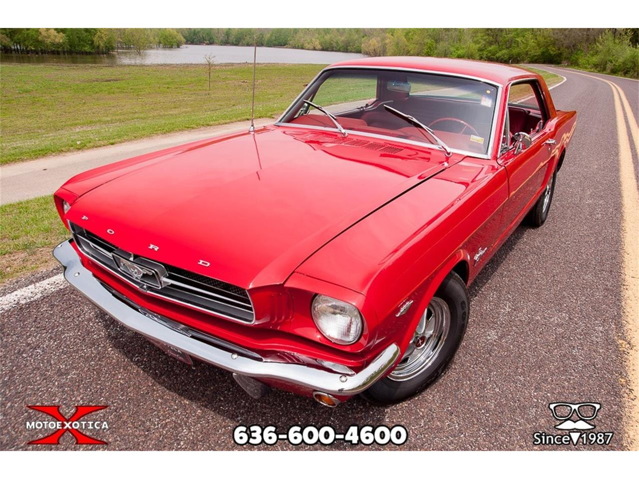 Large Picture of '65 Mustang - PYOJ