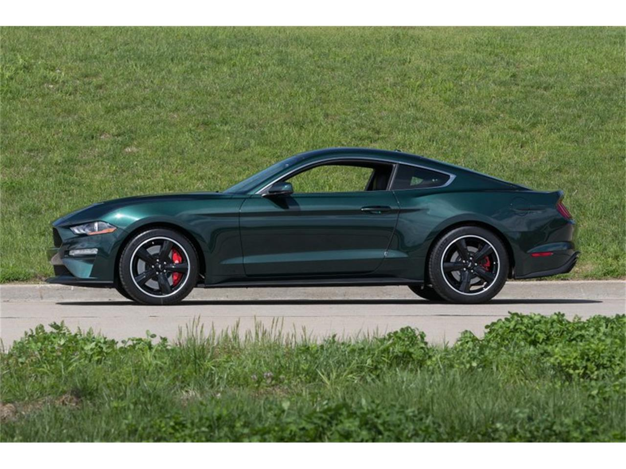Large Picture of '19 Mustang - PYOQ