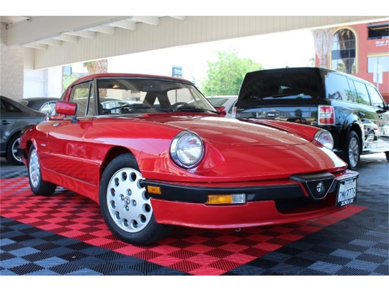 Large Picture of '88 Spider Quadrifoglio - PZ7Y
