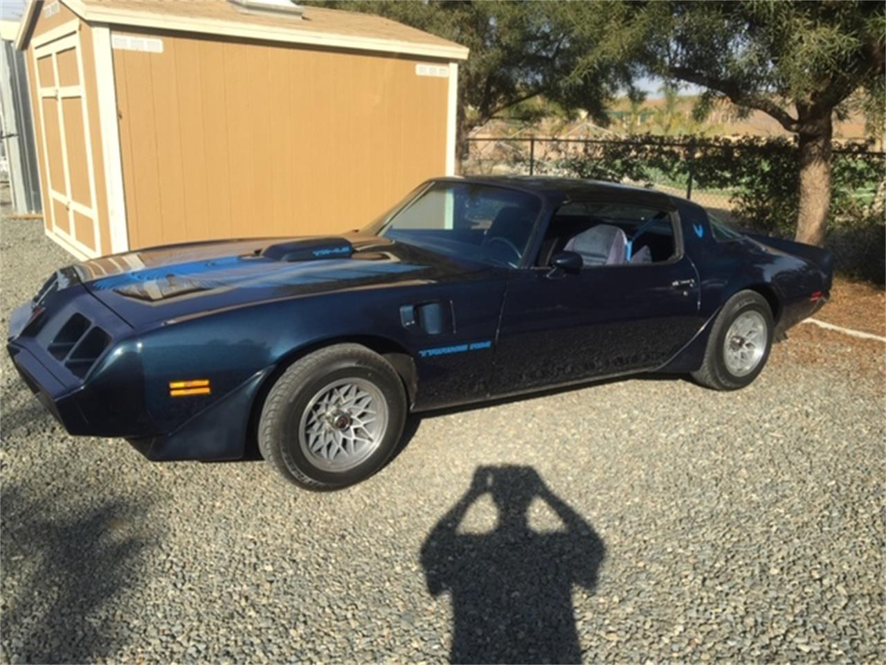 Large Picture of '81 Firebird Trans Am - PZ9M