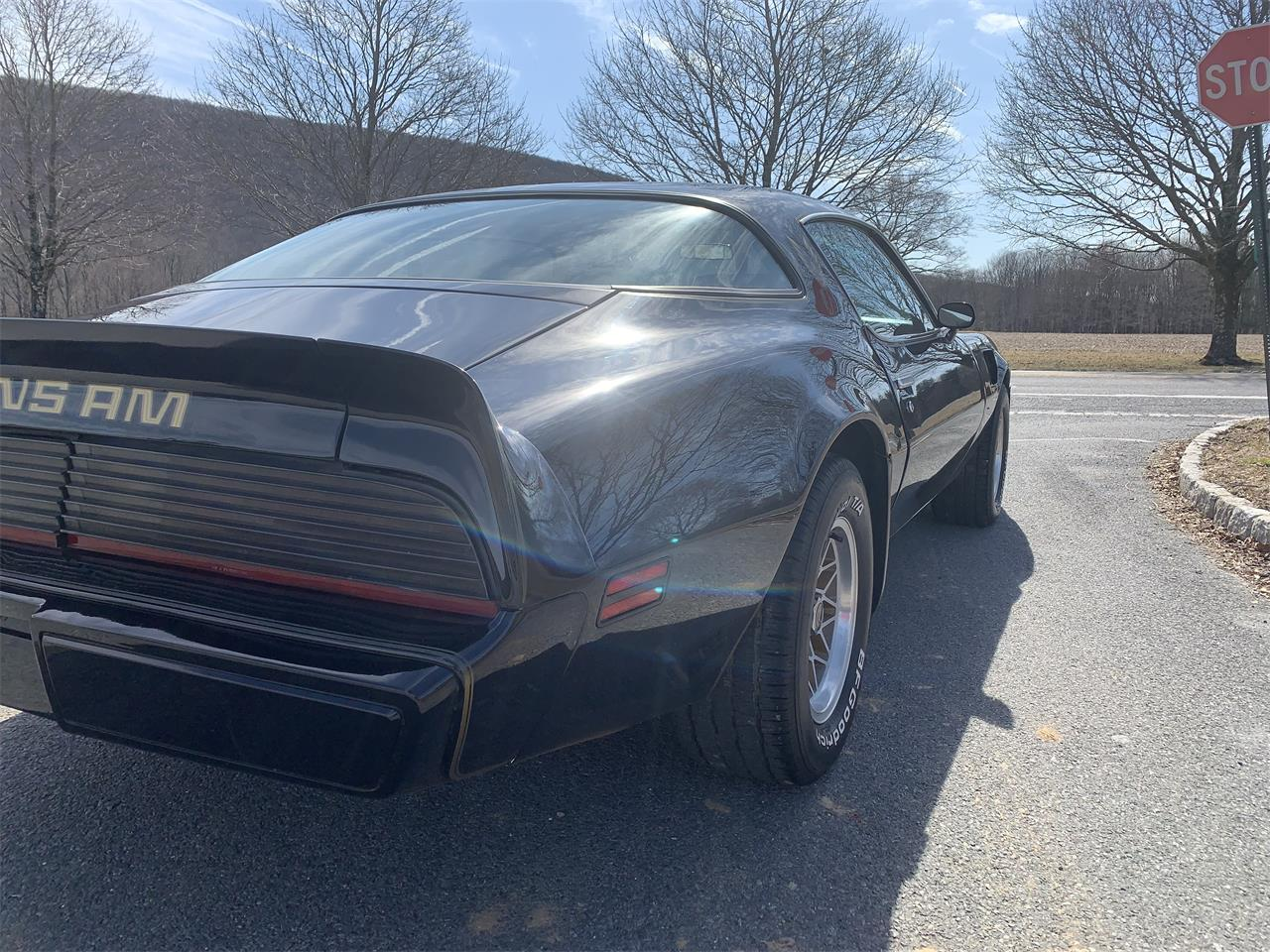 Large Picture of '80 Firebird Trans Am - PZCS