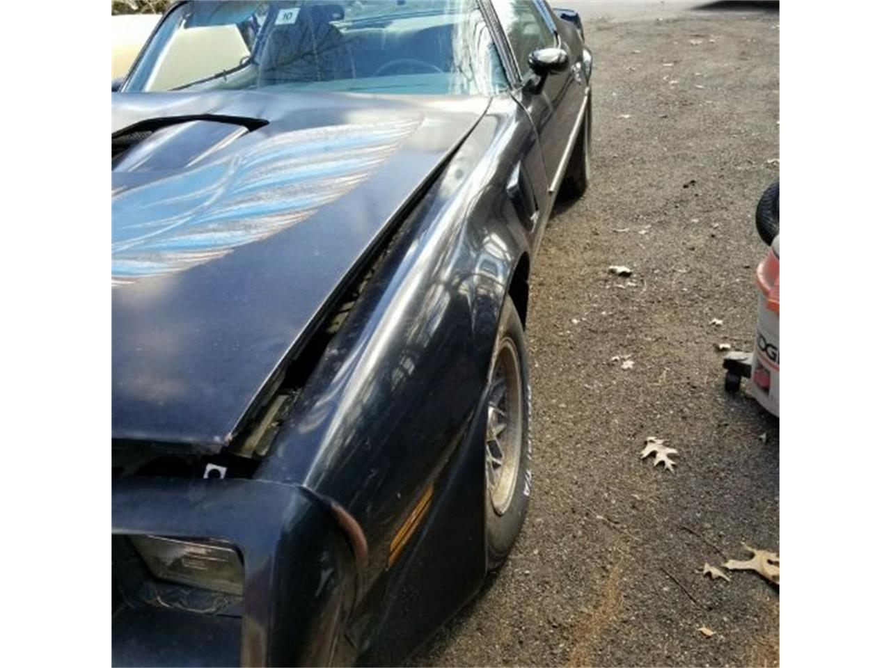 Large Picture of '79 Firebird Trans Am - PXTU