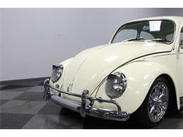 Picture of '67 Beetle - PZMD