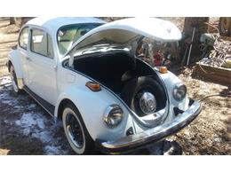 Picture of '73 Beetle - PXUB