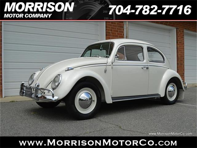 Picture of '60 Beetle - PZOB