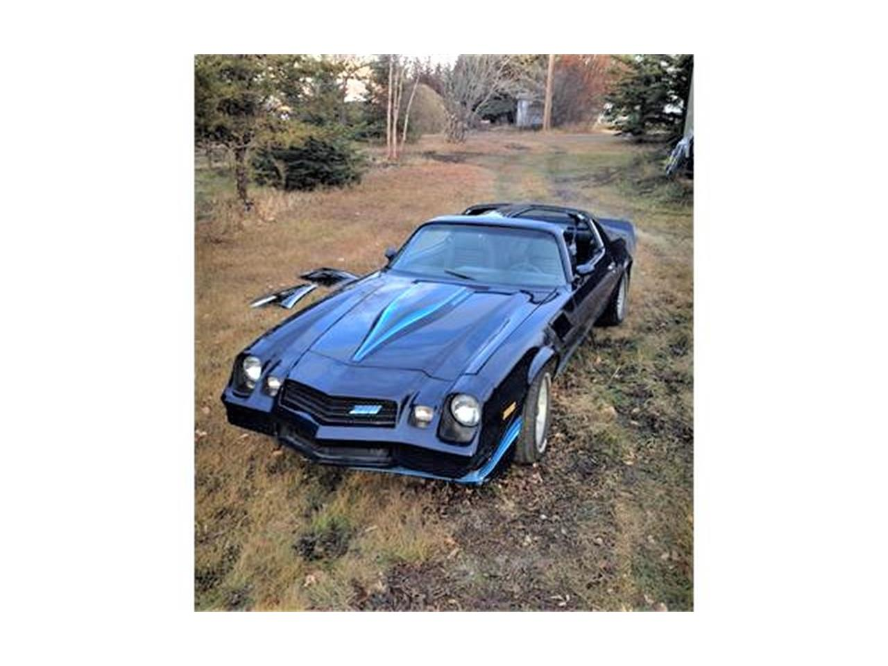 Large Picture of '81 Camaro Z28 - PZSR