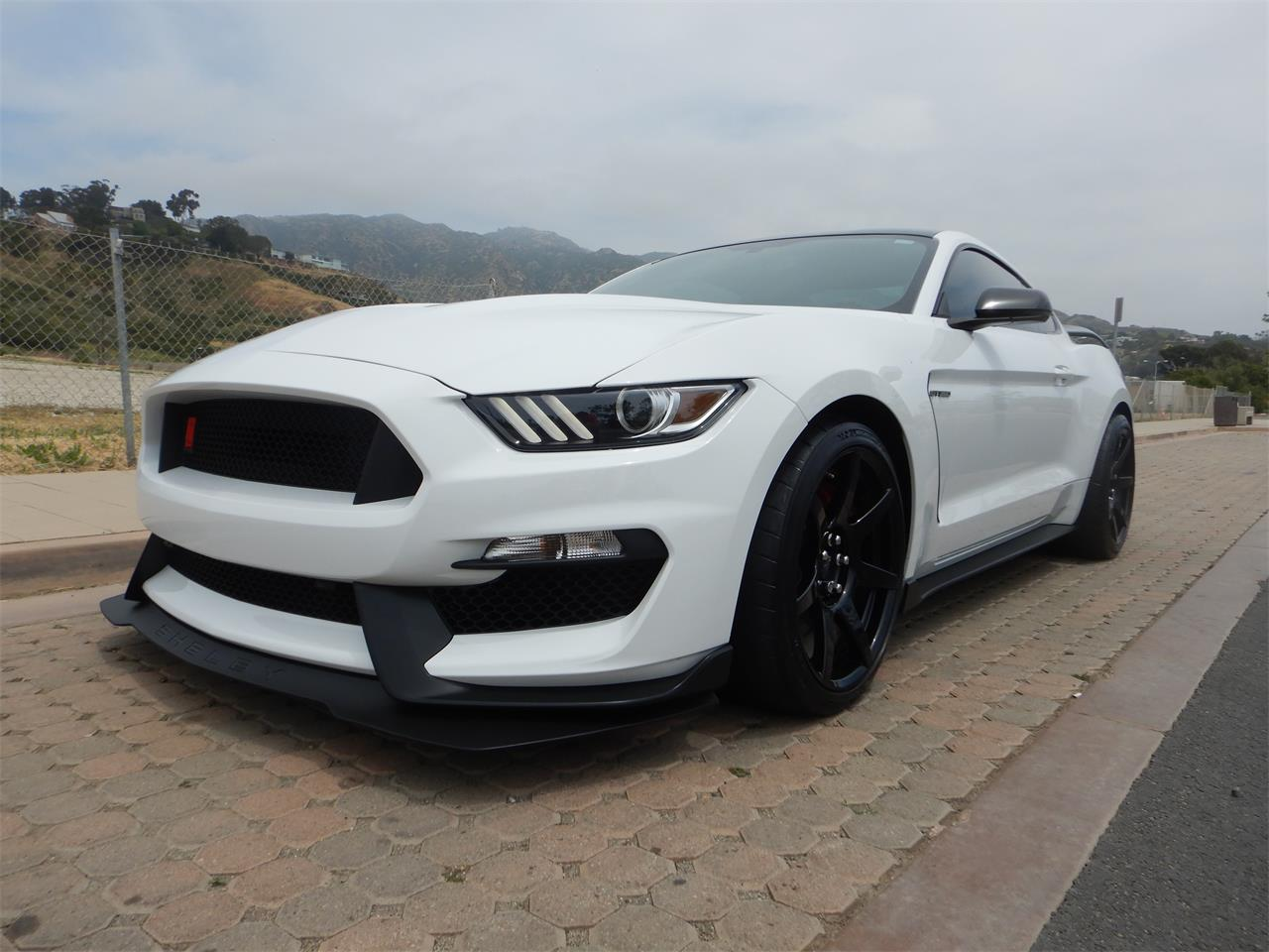 For sale 2017 shelby gt350 in woodland hills california