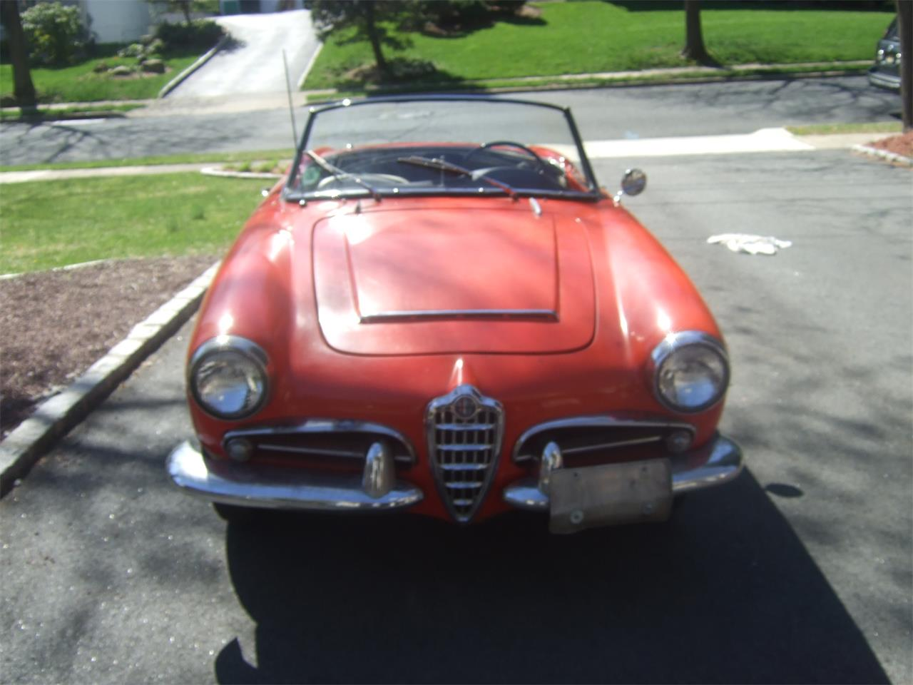 Large Picture of Classic 1964 Giulietta Spider located in Wayne New Jersey - Q08N