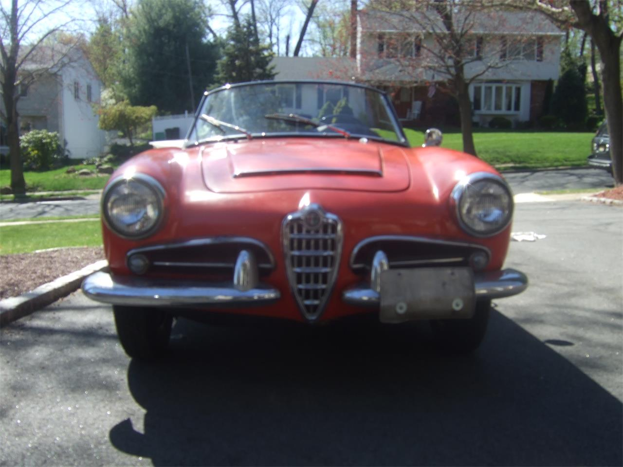 Large Picture of Classic 1964 Alfa Romeo Giulietta Spider located in Wayne New Jersey - Q08N