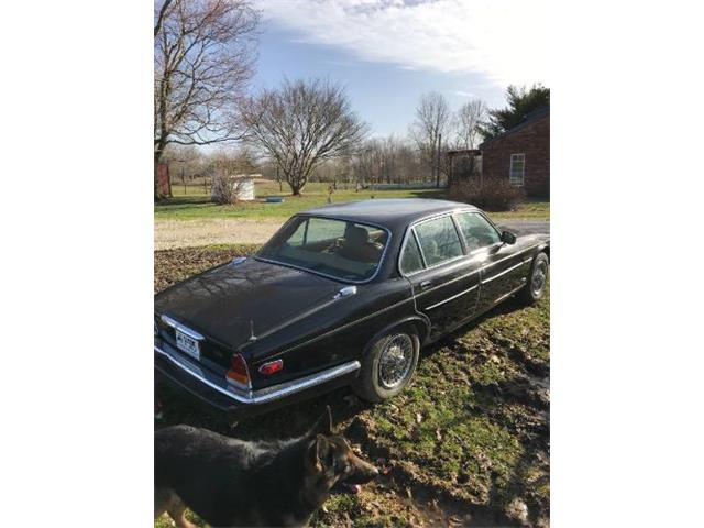 Picture of '86 XJ6 - Q0HM