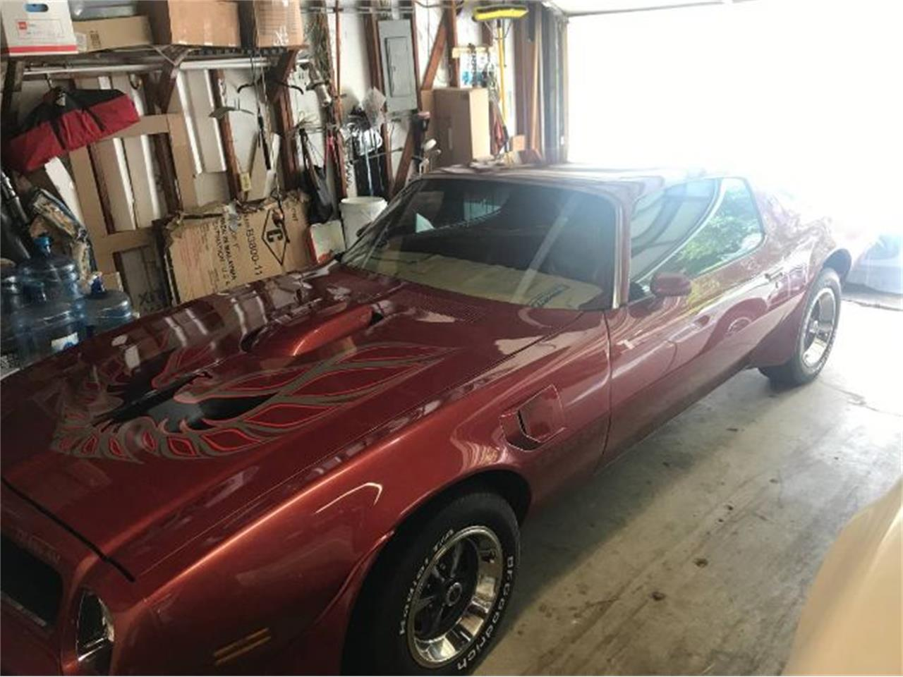 Large Picture of '76 Firebird Trans Am - Q0NI