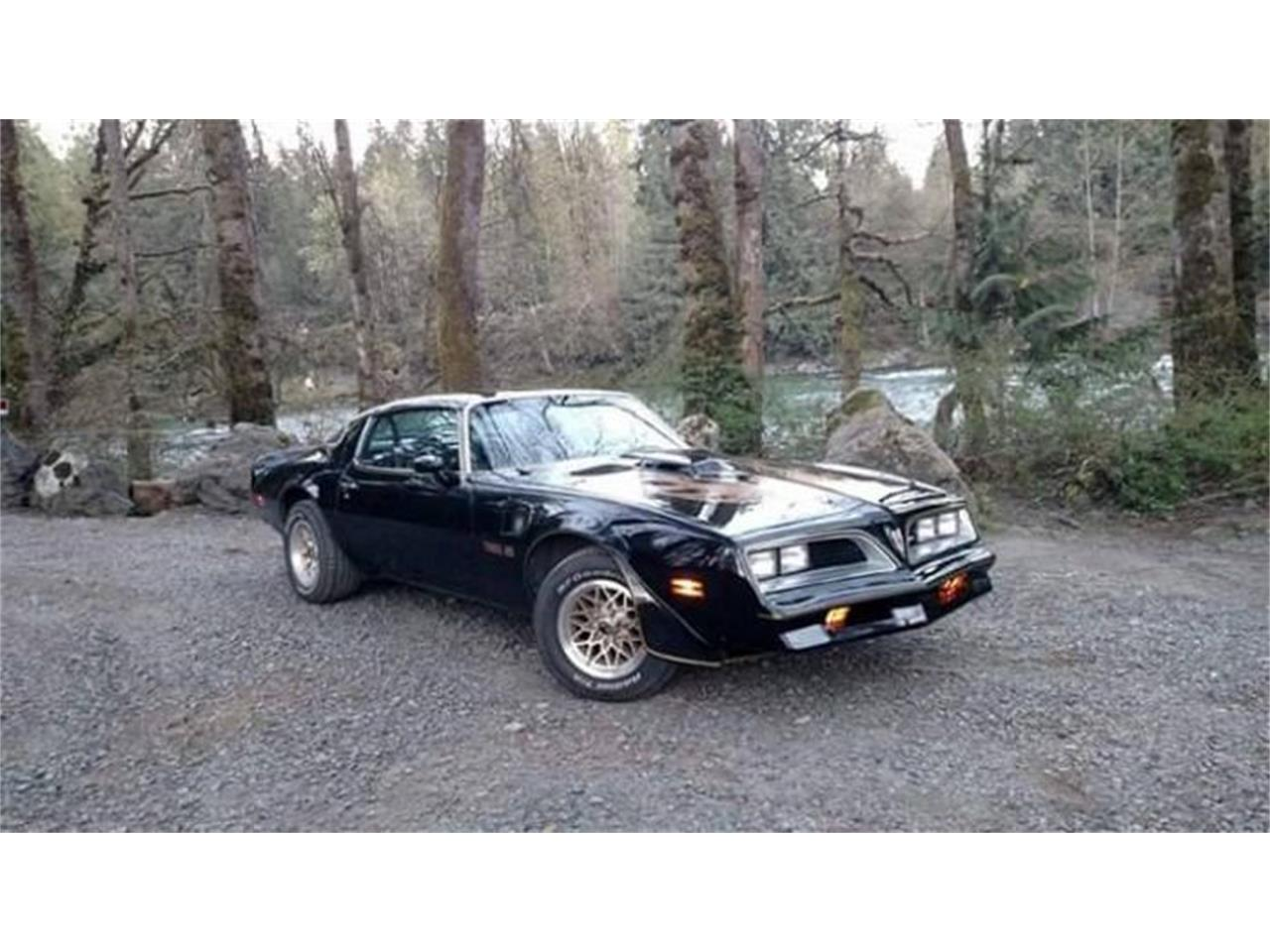 Large Picture of 1977 Pontiac Firebird Trans Am - $20,495.00 - Q0NL