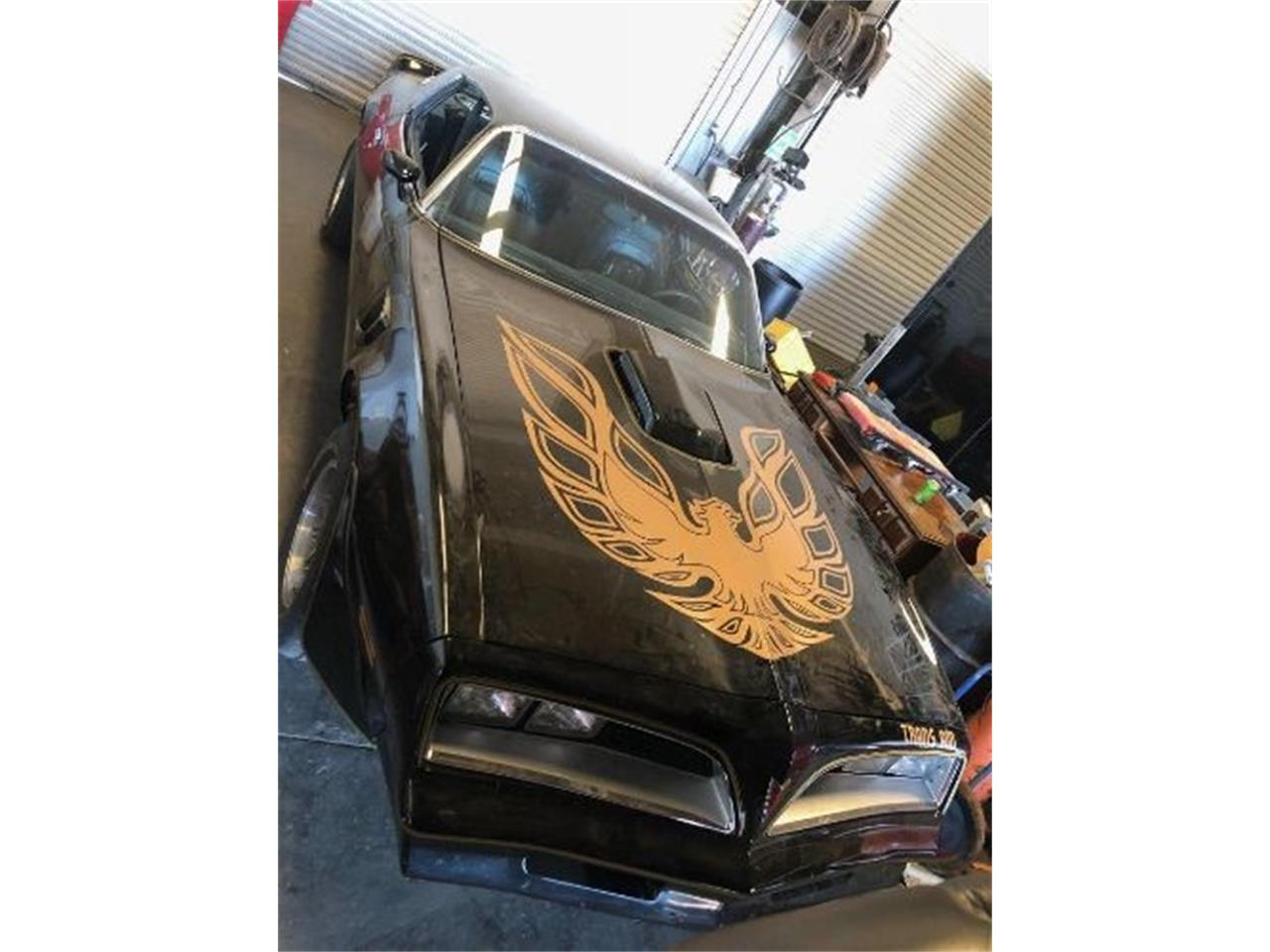 Large Picture of '77 Pontiac Firebird Trans Am - Q0NL