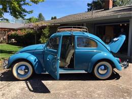 Picture of '63 Beetle - Q0OL