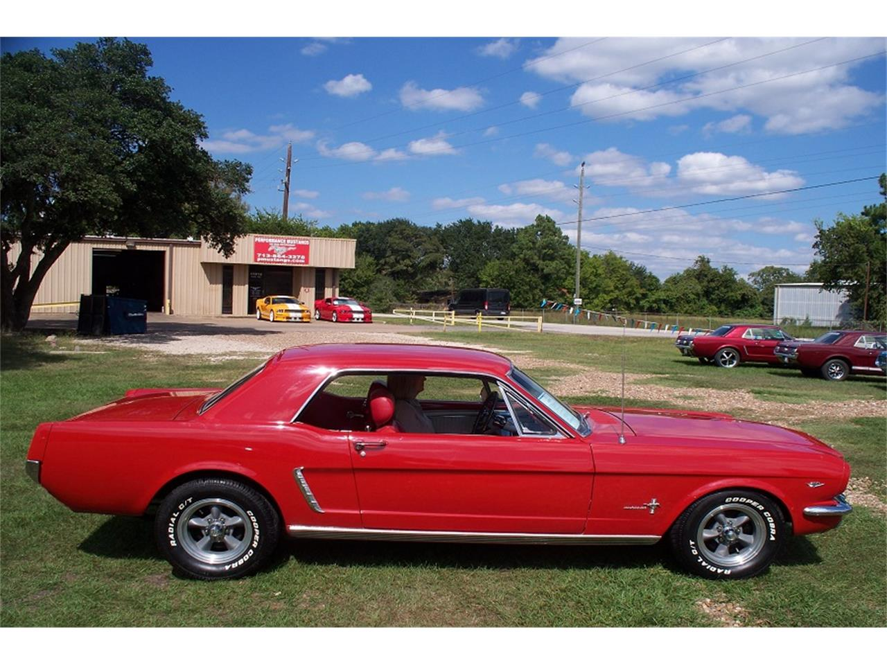 Large Picture of '65 Mustang - Q0R0