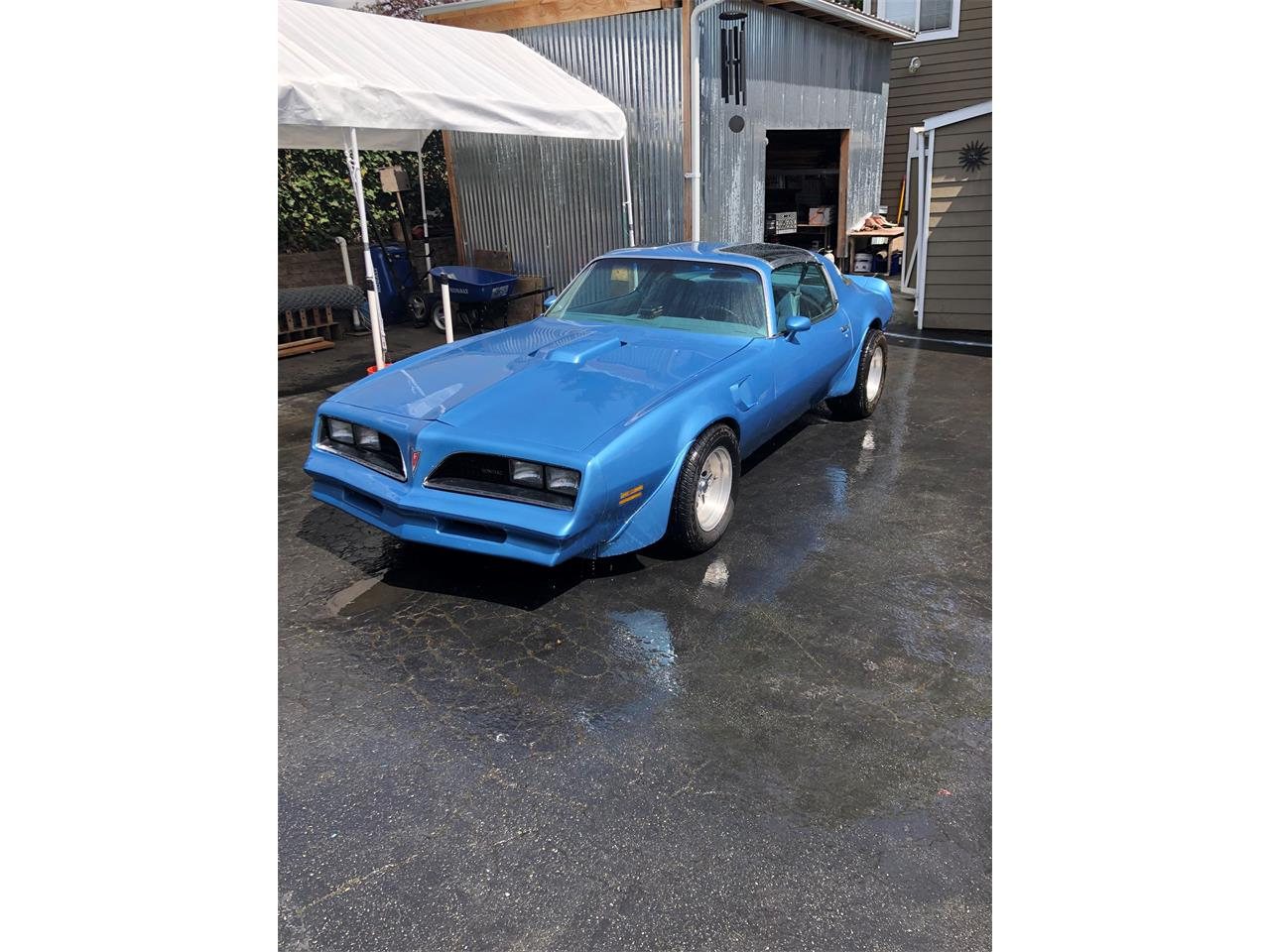 Large Picture of '78 Firebird Trans Am - Q0SL