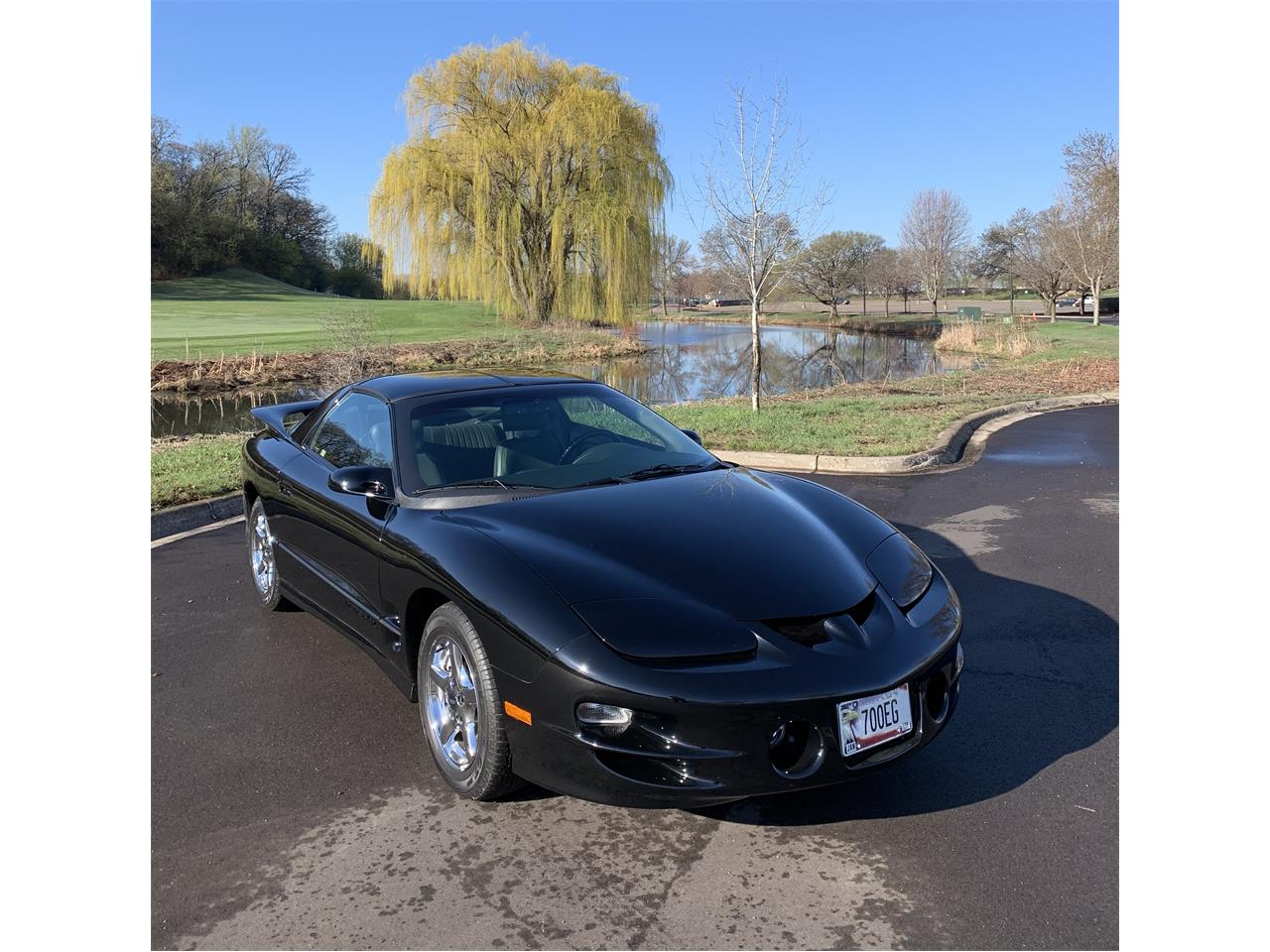 Large Picture of '99 Firebird Trans Am - Q0XW