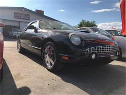 Picture of '02 Thunderbird - PXZJ