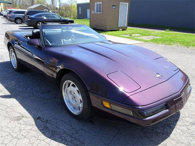 Picture of 1992 Chevrolet Corvette Offered by  - Q1XD