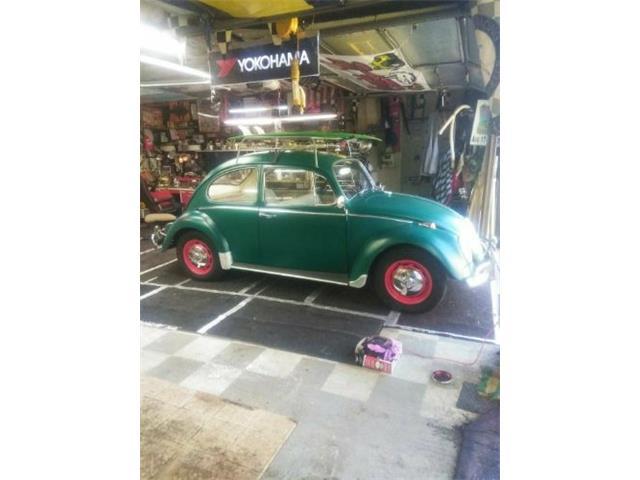 Picture of '66 Beetle - Q1YN