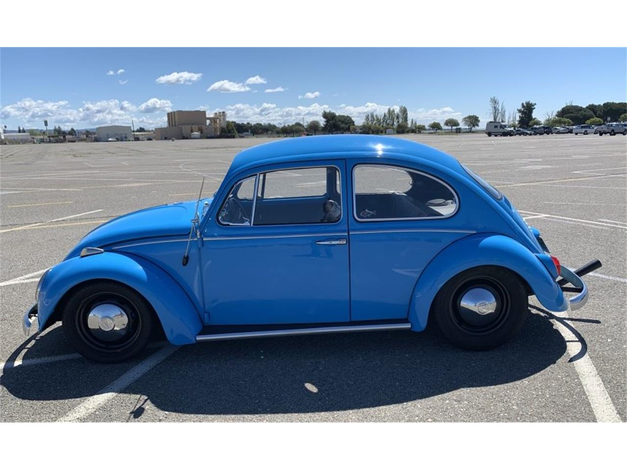Large Picture of '66 Beetle - Q246