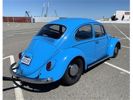 Picture of '66 Beetle - Q246