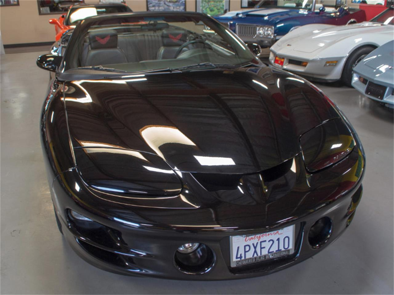 Large Picture of '01 Pontiac Firebird Trans Am Offered by Corvette Mike - PXOV