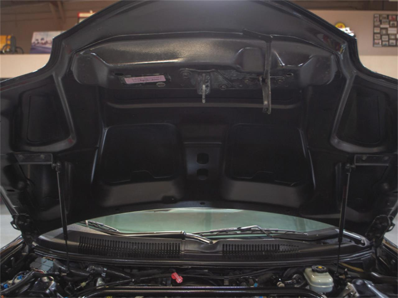 Large Picture of '01 Pontiac Firebird Trans Am - $16,900.00 - PXOV