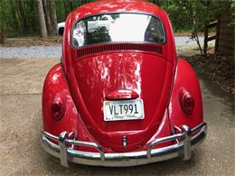 Picture of '66 Beetle - Q2KM