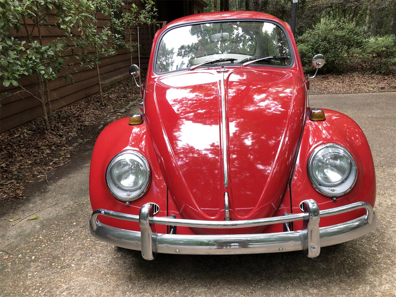 Large Picture of '66 Beetle - Q2KM