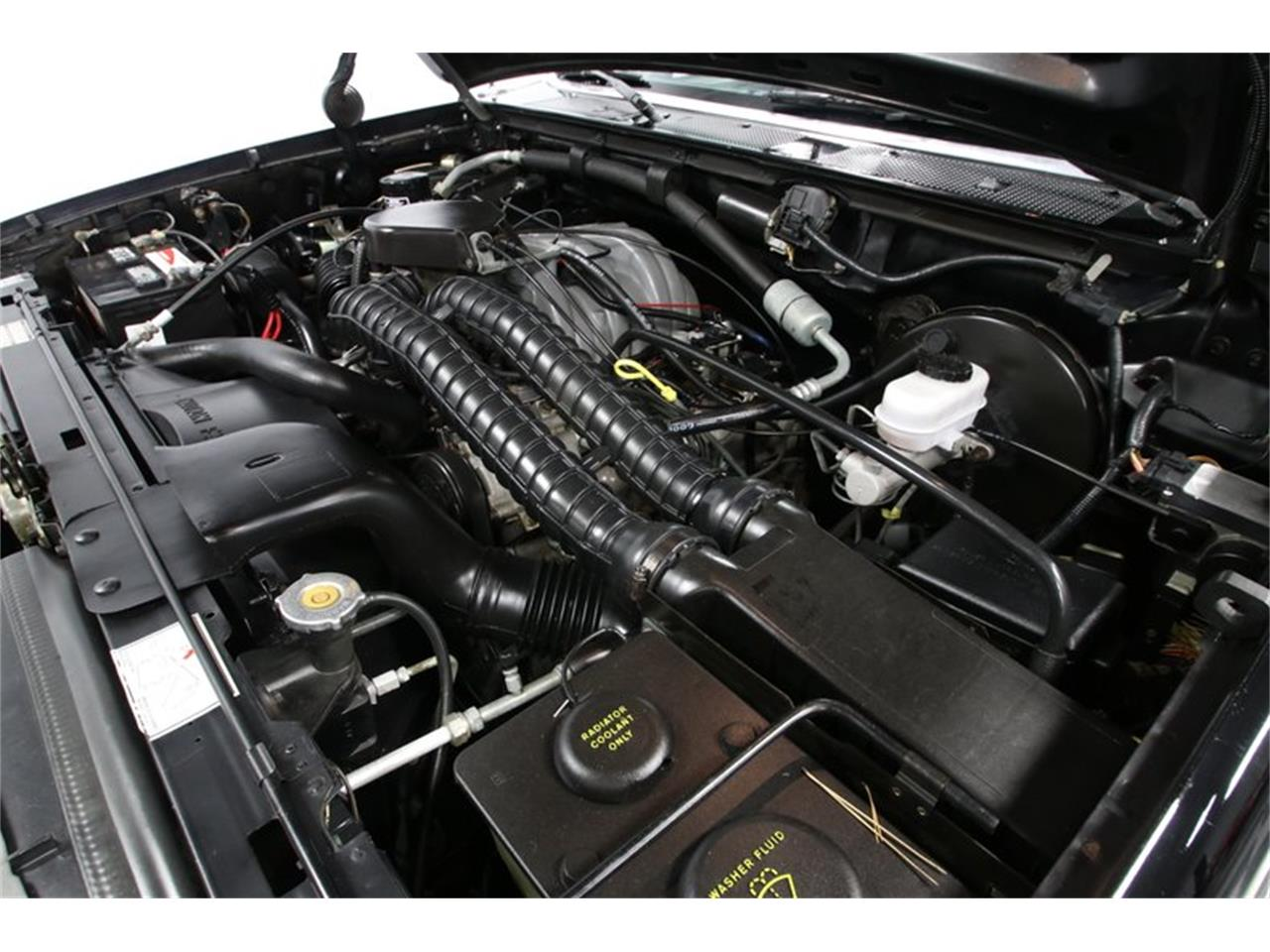 Large Picture of '93 F150 - Q2KZ