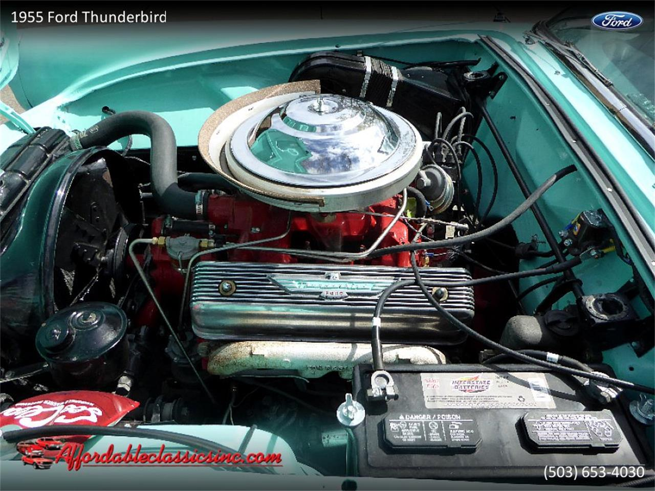 Large Picture of '55 Thunderbird - PY4Y