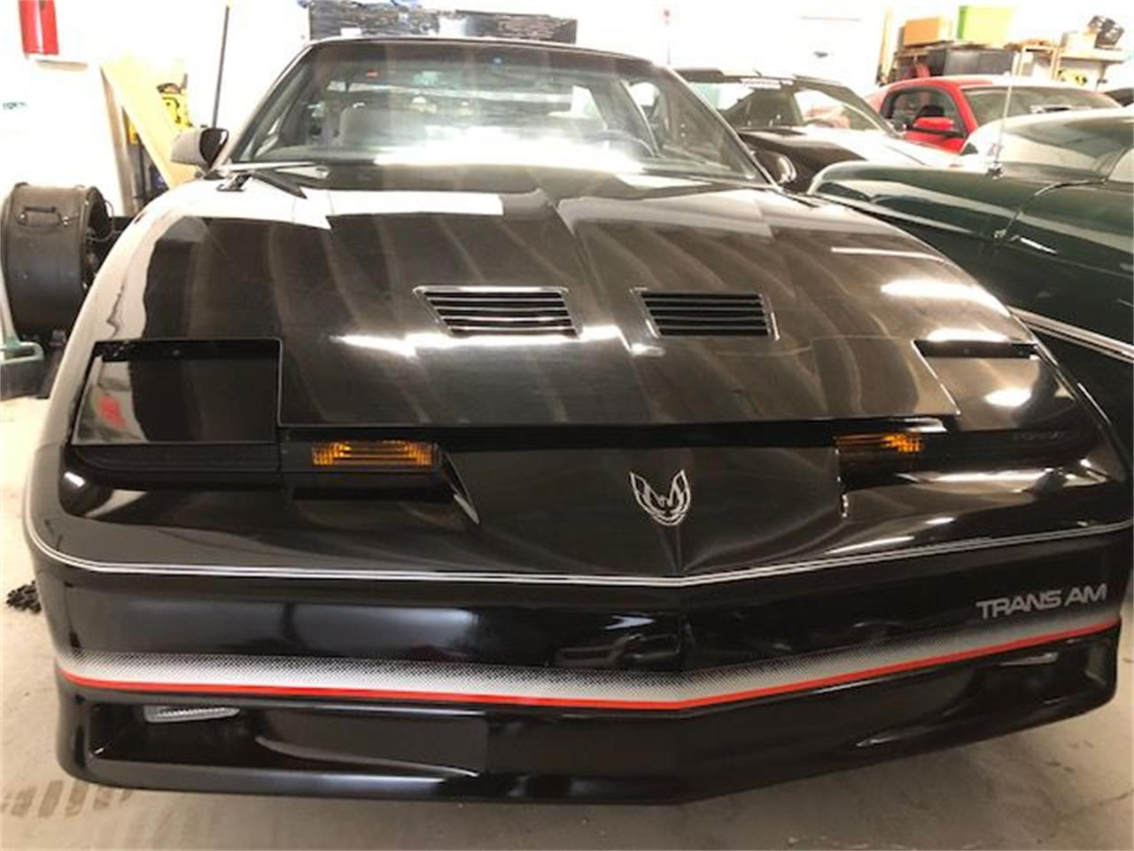 Large Picture of '85 Firebird - PXOX