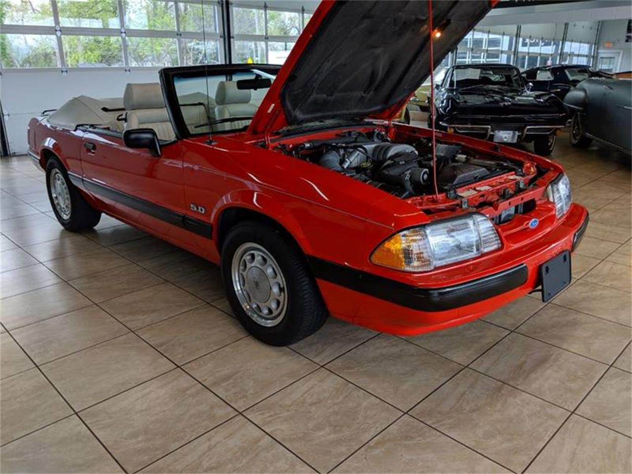 Large Picture of '89 Mustang - Q2R9