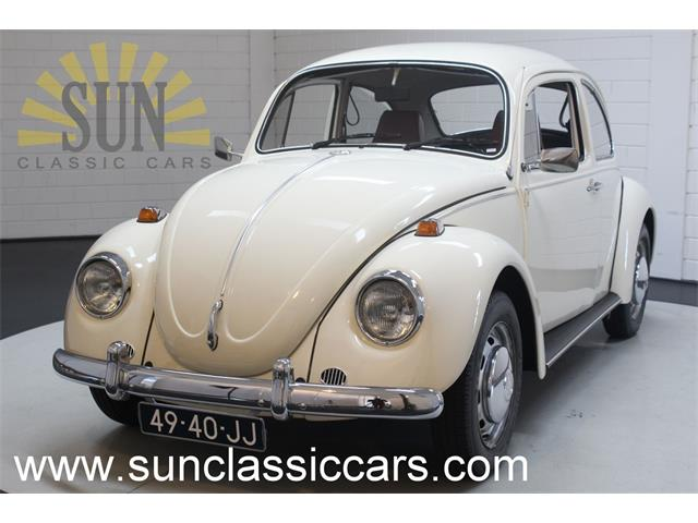 Picture of '69 Beetle - Q2SB