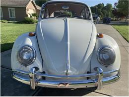 Picture of '66 Beetle - Q2YO