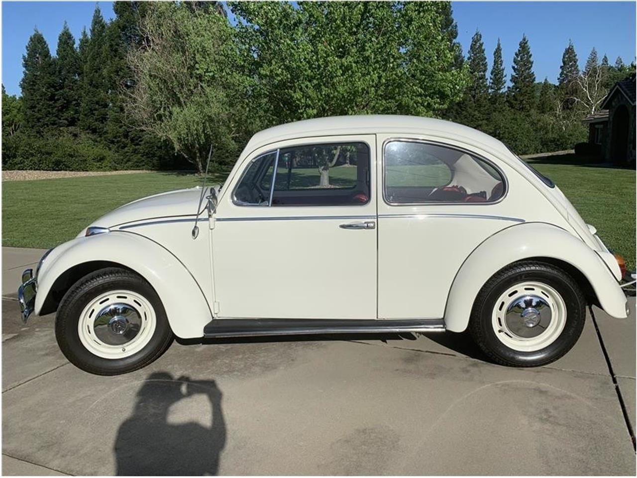 Large Picture of '66 Beetle - Q2YO
