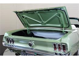 Picture of Classic '67 Ford Mustang located in noord brabant - Q2ZB