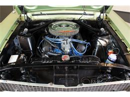 Picture of 1967 Ford Mustang located in noord brabant - Q2ZB