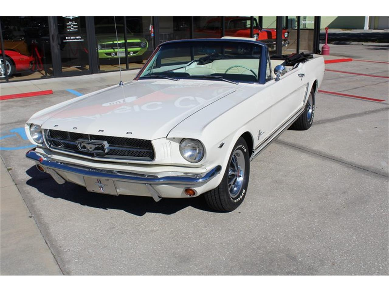 Large Picture of '65 Mustang - PXNB