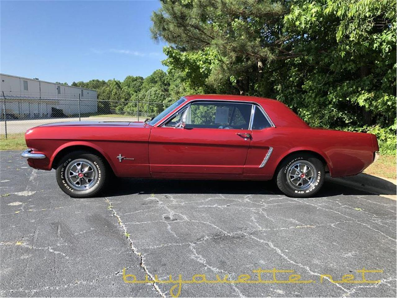 Large Picture of '65 Mustang - Q34B