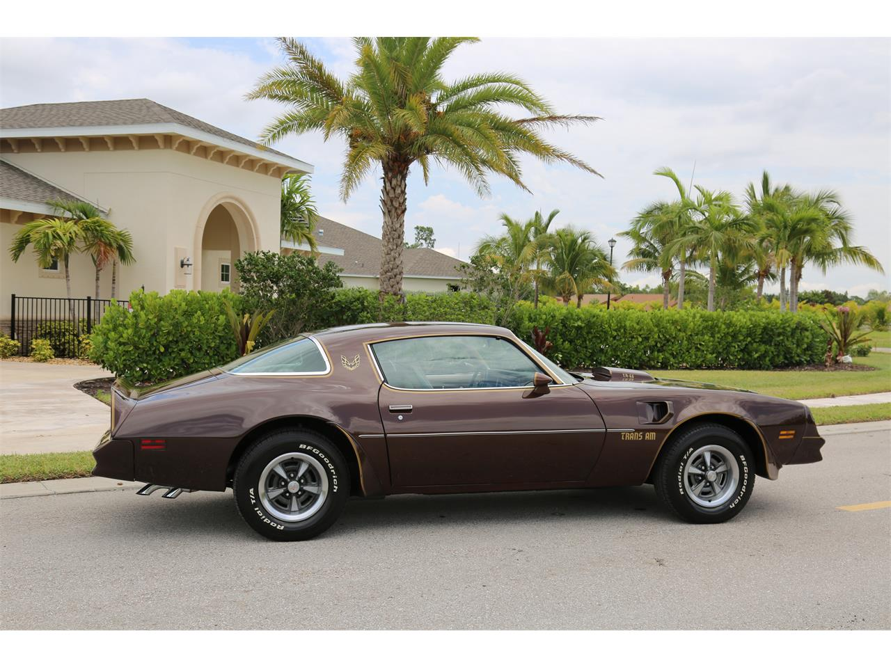 Large Picture of '77 Firebird Trans Am - Q3H2